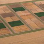 Clearly delimited and sharp-edged trial fields